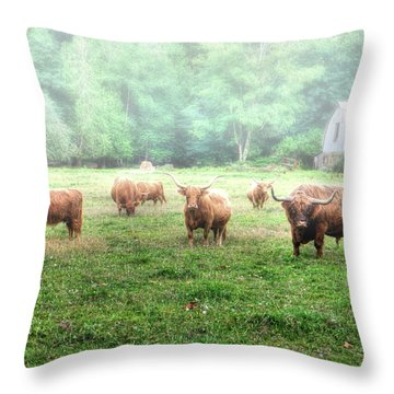 Cattle In The Mist Throw Pillow
