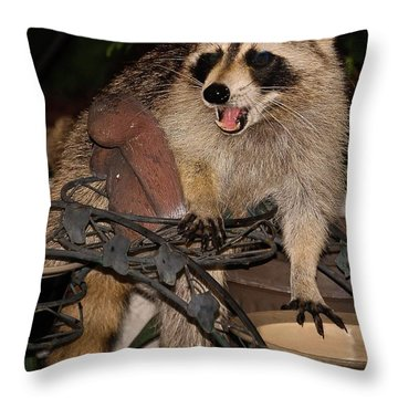 Caught Throw Pillow by DigiArt Diaries by Vicky B Fuller
