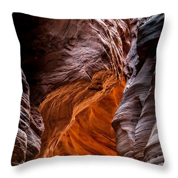 Caught In A Pinch Throw Pillow
