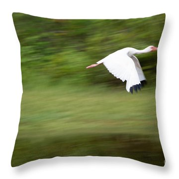 Caught In Flite Throw Pillow