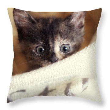 Throw Pillow featuring the photograph In The Hamper by Amy Tyler