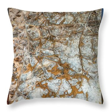 Cave Abstraction.... Throw Pillow