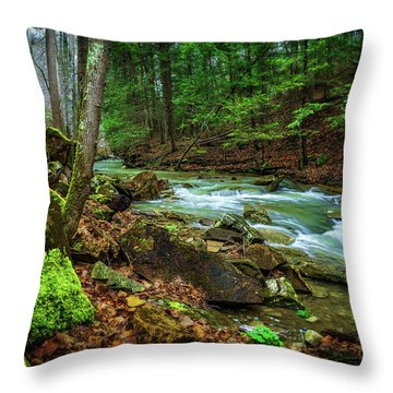 Cave Branch #15 Throw Pillow