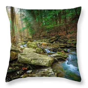 Cave Branch #9 Throw Pillow