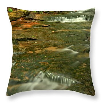 Cave Falls Portrait - Forbes State Forest Throw Pillow