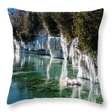 Throw Pillow featuring the photograph Cave Point County Park by Randy Scherkenbach