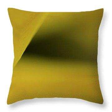 Cavern Throw Pillow