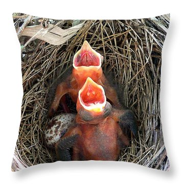 Cavernous Cardinals Throw Pillow by Al Powell Photography USA