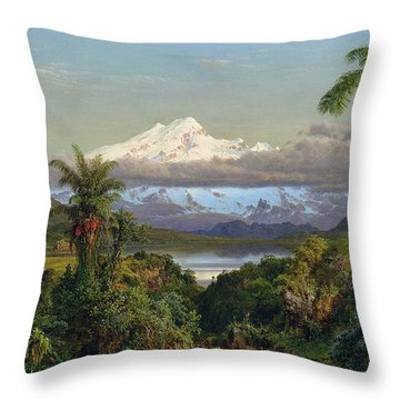 Cayambe Throw Pillow