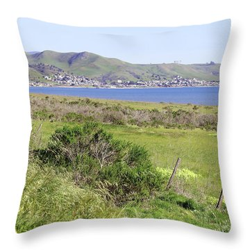 Throw Pillow featuring the photograph Cayucos Coastline - California by Art Block Collections