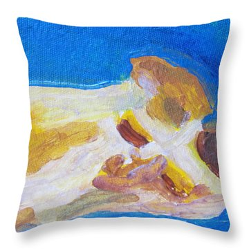 Cc The Cat Throw Pillow