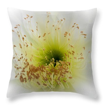 Cctus Flower Throw Pillow