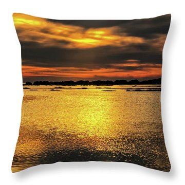 Throw Pillow featuring the photograph Ceader Key Florida  by Louis Ferreira