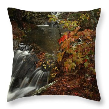 Cecil Cove Runoff Throw Pillow