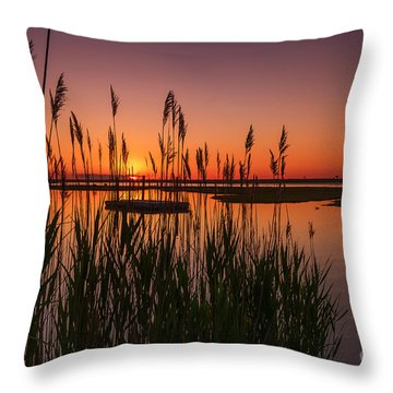 Cedar Beach Sunset In The Reeds Throw Pillow