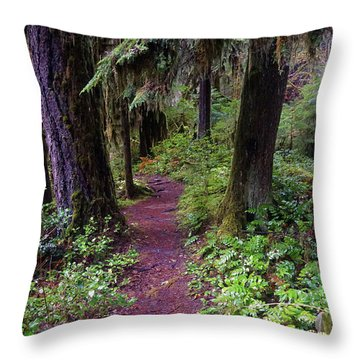Throw Pillow featuring the photograph Cedar Creek Trail #3 by Ben Upham III