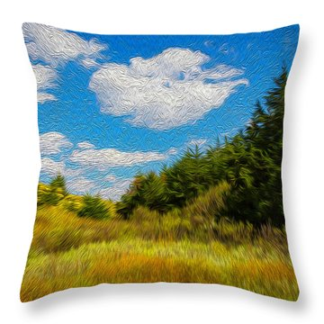 Cedar Gulch Throw Pillow