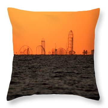 Cedar Point Skyline Throw Pillow