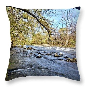 Cedar River 2 Throw Pillow