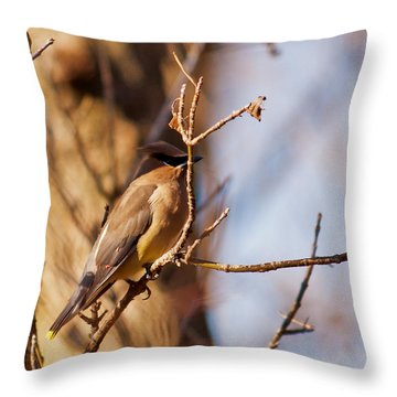 Cedar Waxwing In Autumn Throw Pillow
