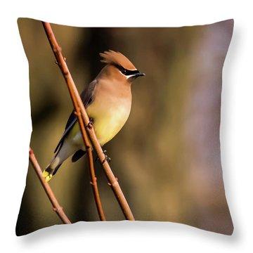 Cedar Waxwing On Branch Throw Pillow