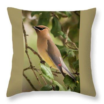 Cedar Waxwing Portrait Throw Pillow