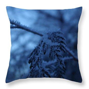 Cedars Of Ice II Throw Pillow