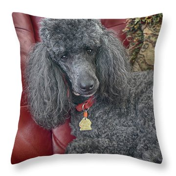 Cedric Throw Pillow