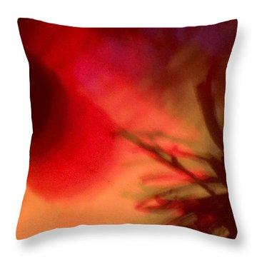 Celebrate Throw Pillow by M Stuart