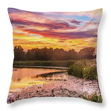 Celebrating Sky Throw Pillow