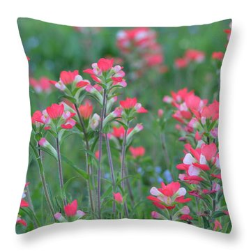 Celebration Of Paintbrushes Throw Pillow