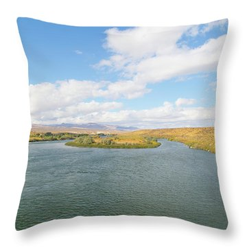 Celebration Park Idaho Throw Pillow