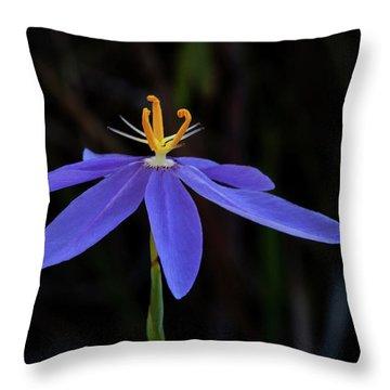 Celestial Lily Throw Pillow