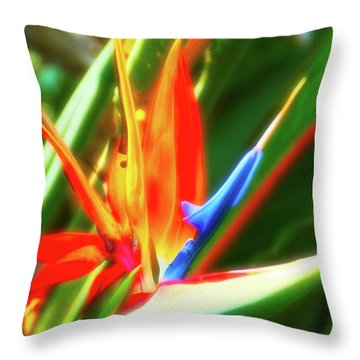 Throw Pillow featuring the photograph Celestial Skies Bird Of Paradise by Aimee L Maher Photography and Art Visit ALMGallerydotcom