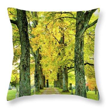 Cemetery Lane Throw Pillow