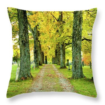 Throw Pillow featuring the photograph Cemetery Lane by Greg Fortier