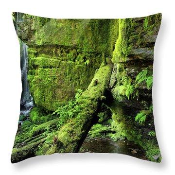 Centennial Falls Mist Throw Pillow by Leland D Howard