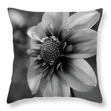Center Attraction Throw Pillow by Sheila Ping
