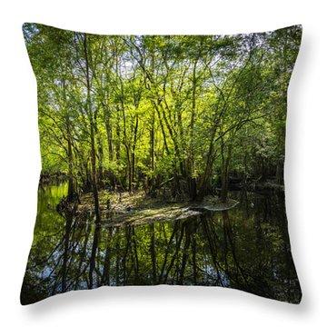 Center Island Throw Pillow