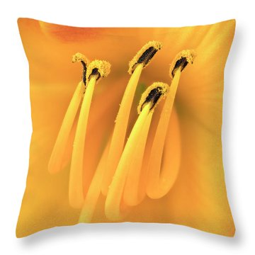 Center Of An Orange Daylily Throw Pillow by Jim Hughes