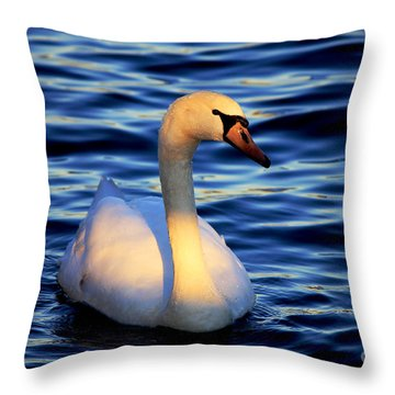 Throw Pillow featuring the photograph Center Stage  by Ola Allen