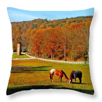 Cherry Valley, Pennsylvania Throw Pillow