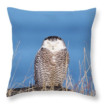 Centered Snowy Owl Throw Pillow