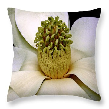 Throw Pillow featuring the photograph Centerpiece - Magnolia Blossom 010 by George Bostian