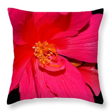 Throw Pillow featuring the photograph Centerpiece - Pink Begonia 007 by George Bostian