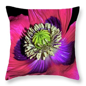 Centerpiece - Poppy 020 Throw Pillow by George Bostian