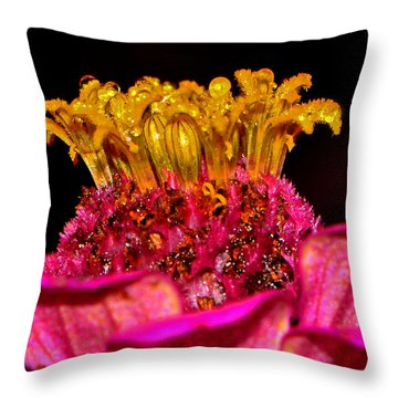 Centerpiece - Zinnia Crown 001 Throw Pillow by George Bostian
