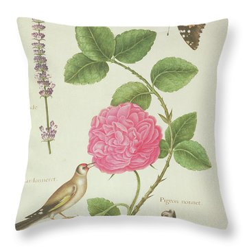 Centifolia Rose, Lavender, Tortoiseshell Butterfly, Goldfinch And Crested Pigeon Throw Pillow by Nicolas Robert
