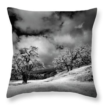 Central California Ranch Throw Pillow