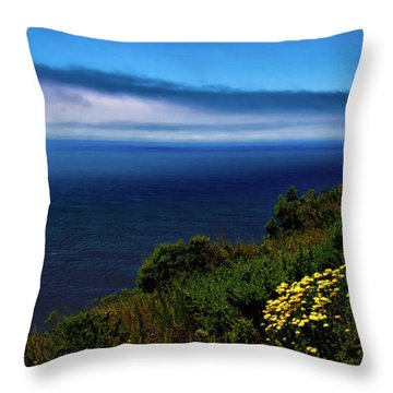 Central Coast Beach 3 Throw Pillow